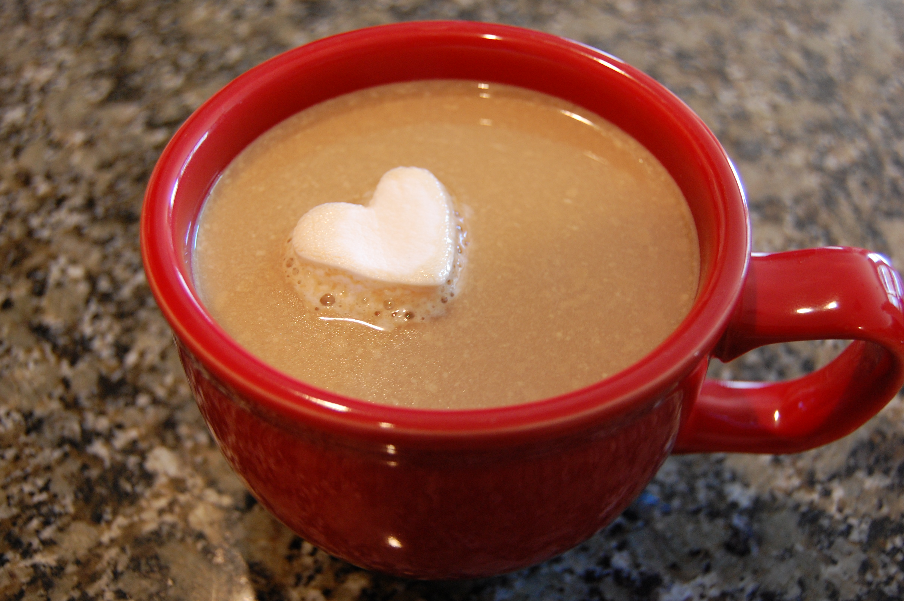 homemade coffee creamer041
