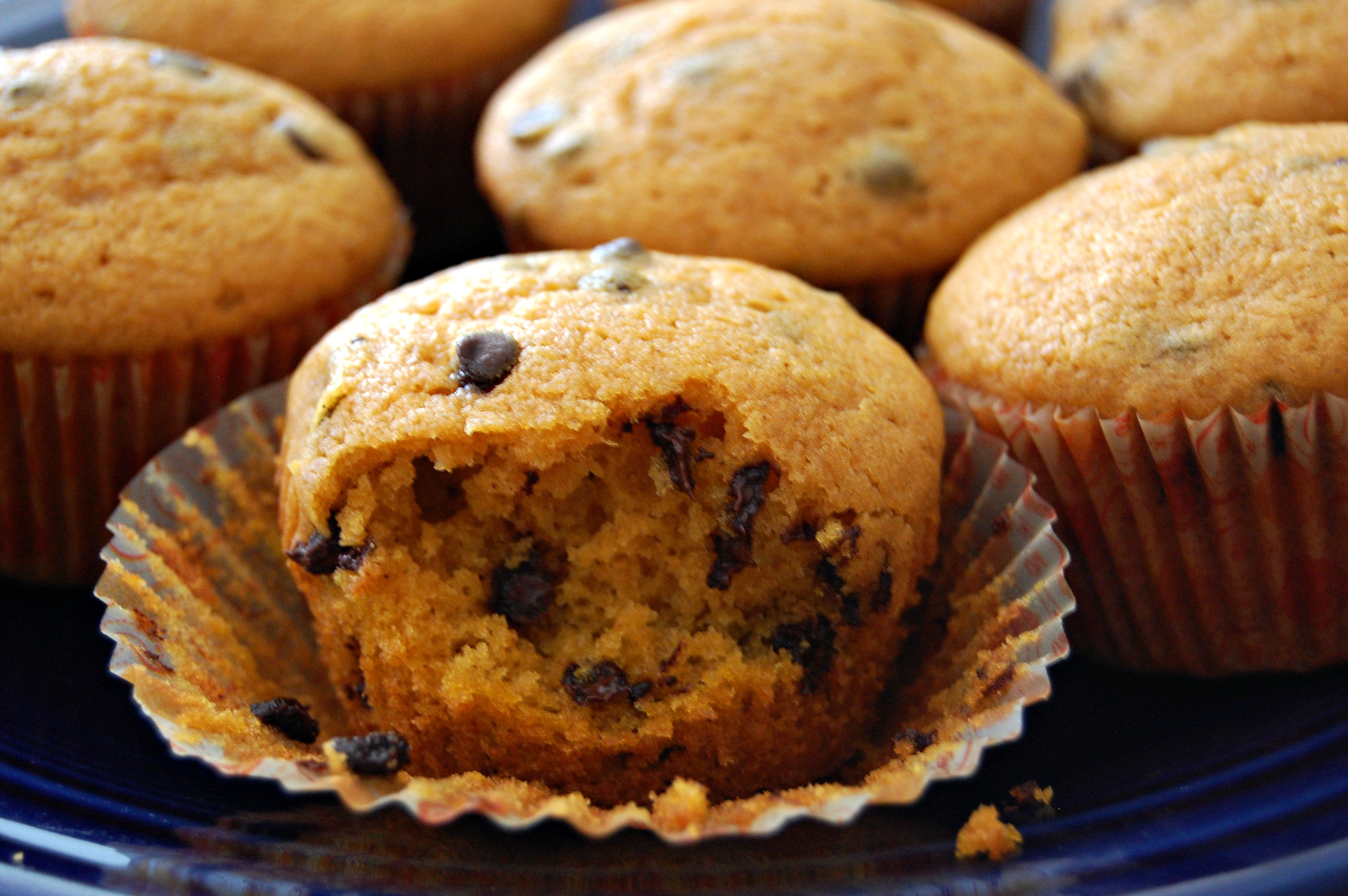 Pumpkin Chocolate Chip Muffins | Cozycakes Cottage