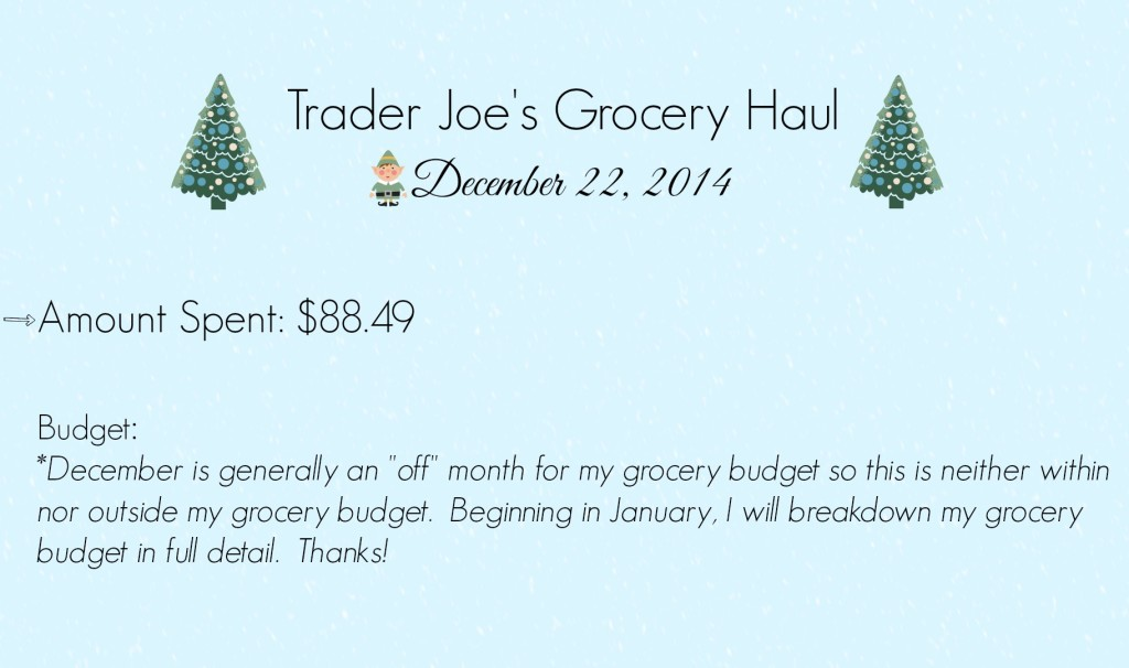 Trader Joes Grocery Haul Budget End Slate snow 12 22 14